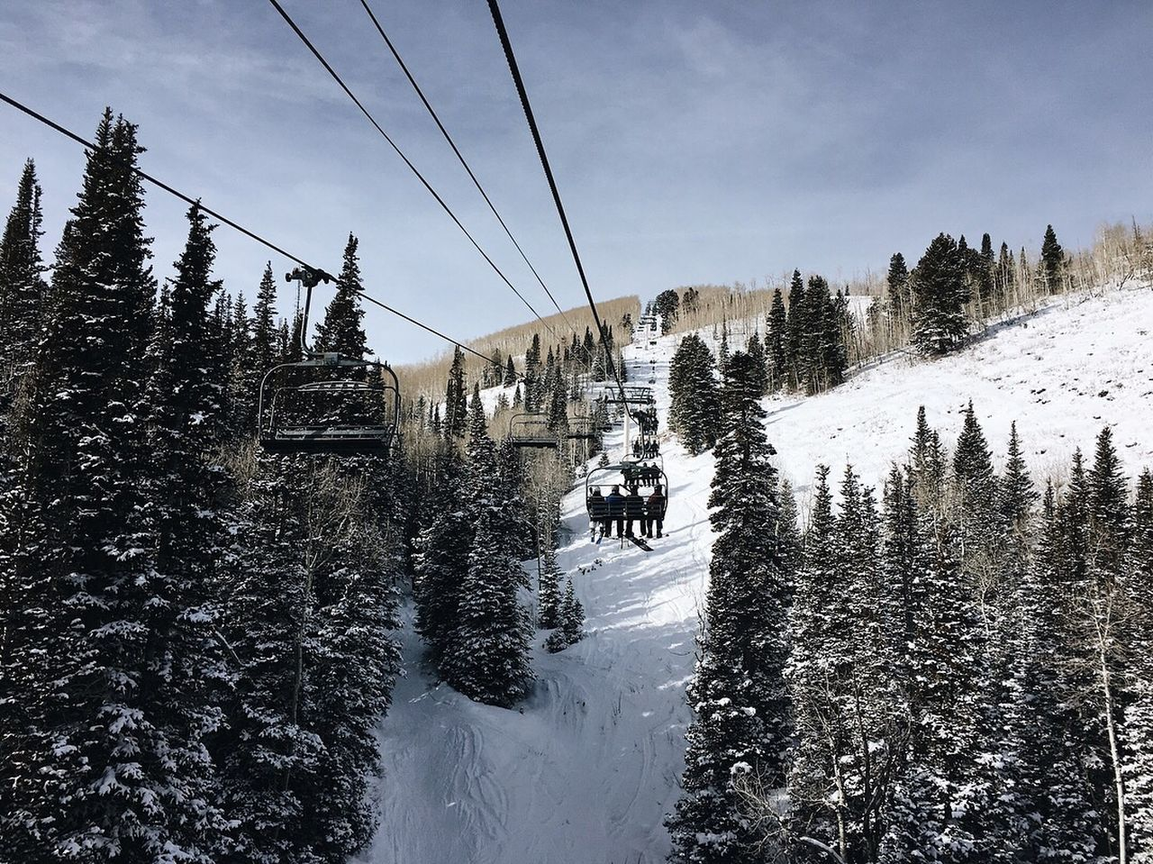 snow, winter, cold temperature, tree, sky, cable, plant, cable car, nature, mountain, beauty in nature, transportation, scenics - nature, overhead cable car, ski lift, day, land, incidental people, covering, outdoors, electricity, snowcapped mountain