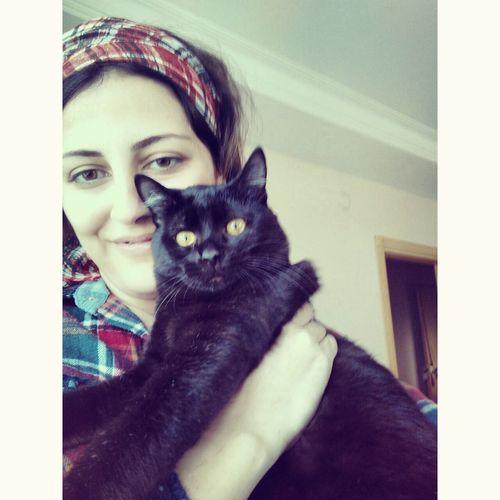 Cute Pets Cats Of EyeEm My_Love Hi! Kittensofinstagram Kitten 🐱 Babycat ❤ Karakedi şansmeleğim Aşk