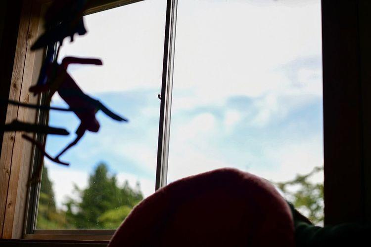 よく階段から覗く空を見上げていた。 Real People Sky Window Men Glass - Material People Day Nature Silhouette Cloud - Sky