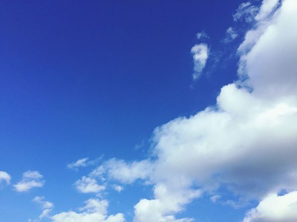 Sky Blue Cloud - Sky Nature Low Angle View Fluffy Tranquility Cloudscape Beauty In Nature No People Backgrounds Tranquil Scene Scenics Heaven Day Outdoors London EloEmenike Hello Summer Summer The Great Outdoors - 2017 EyeEm Awards