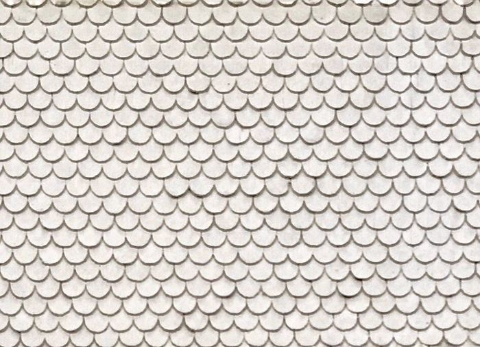 Pattern Pieces Shingles Faces Of EyeEm Iphonephotography Skin Surface Structure Check This Out Everything In Its Place