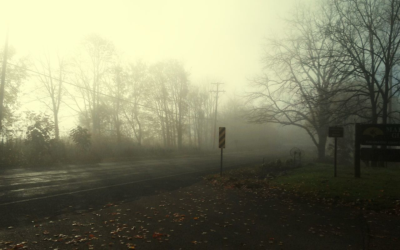 fog, autumn, tree, weather, bare tree, nature, change, tranquility, outdoors, day, no people, cold temperature, beauty in nature, landscape, winter, grass, hazy, sky