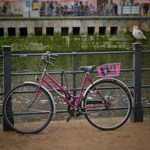 Berlin Germany Bicycle Transportation Mode Of Transport Land Vehicle Day Railing Stationary Built Structure Outdoors Architecture No People Bicycle Rack Nature