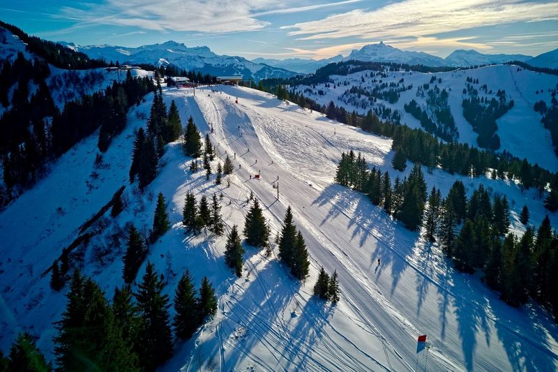 French Alps Portes Du Soleil Les Gets Haute-Savoie  Snow High Angle View Nature Tree Outdoors Winter Cold Temperature Mountain Landscape Scenics Beauty In Nature Ski Holiday Ski Lift