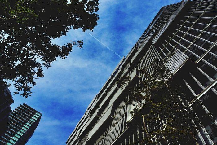 東芝未来科学館前にて。 Vapor Trail Sky