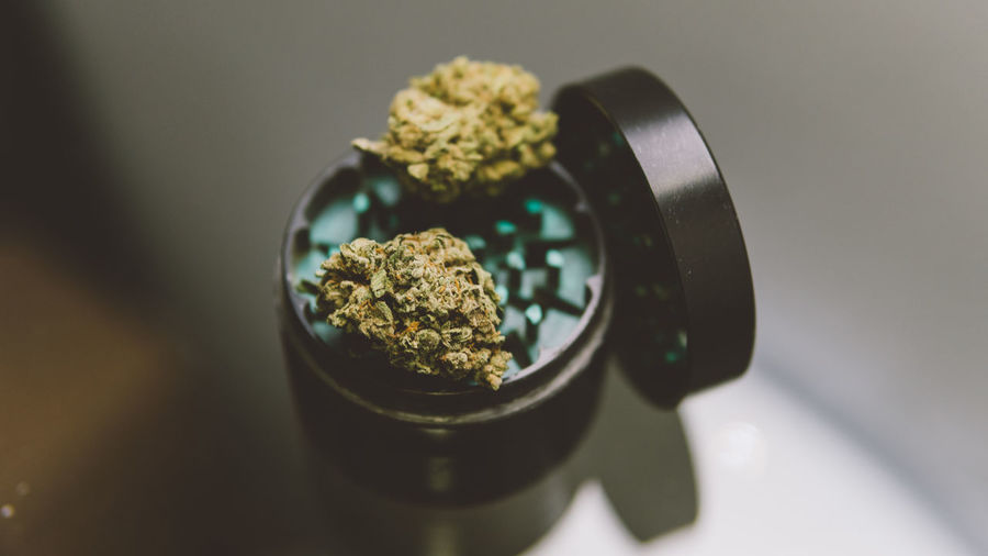 High angle view of marijuana plant on container