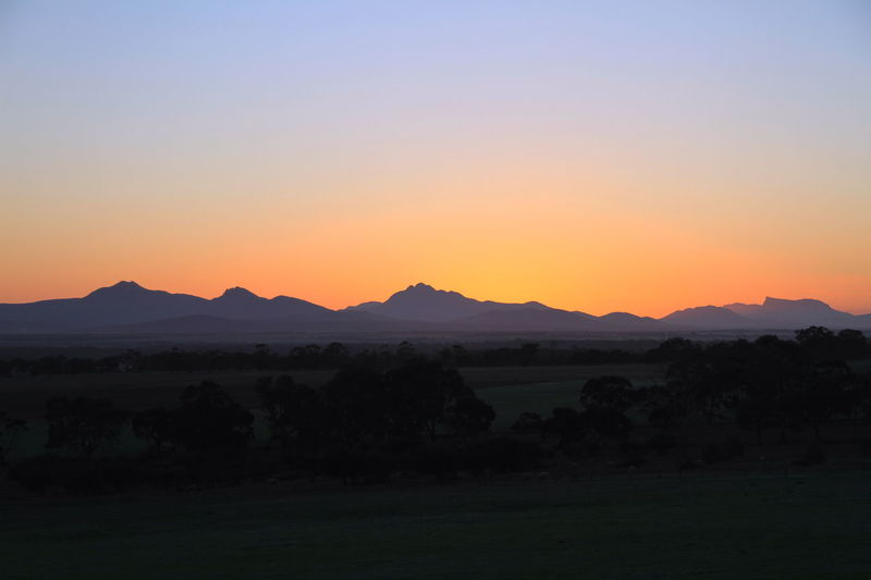 The sun never sleeps in Stirling Range National Park Beauty In Nature Clear Sky Copy Space Dawn Of A New Day Environment Idyllic Land Landscape Mountain Mountain Range Nature No People Non-urban Scene Orange Color Outdoors Plant Remote Scenics - Nature Silhouette Sky Sunrise Sunset Tranquil Scene Tranquility