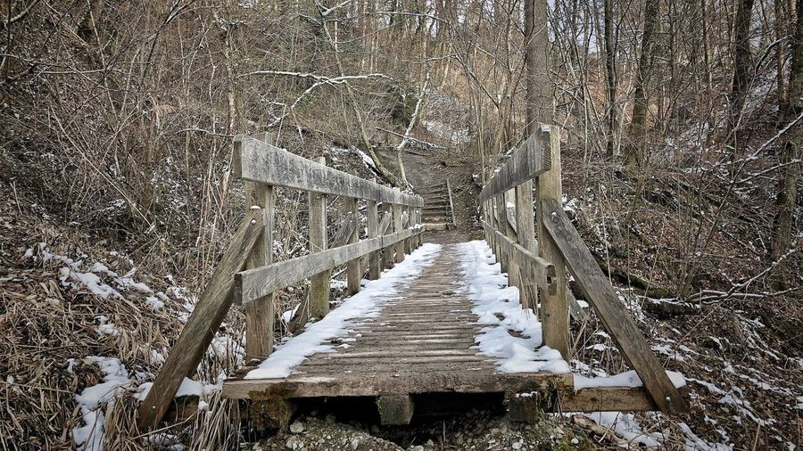 Photographer Photography Photooftheday Picoftheday Outside Photography Outdoor Photography Bridge Naturephotography Forest Photography No People High Angle View Pattern Day Architecture Full Frame Nature Built Structure Outdoors Sunlight Cold Temperature Large Group Of Objects