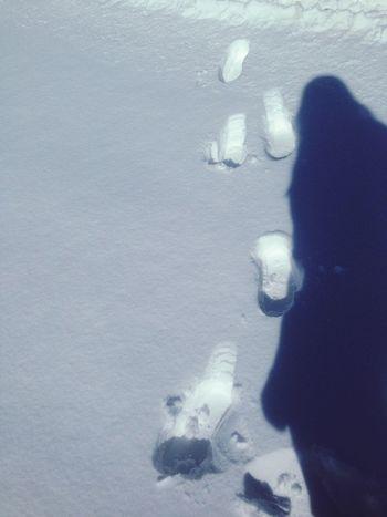 Snow Winter Cute