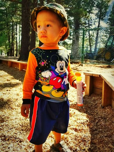 Child Childhood One Boy Only Portrait Standing Day CA Truckee  PricelessMoment Cute