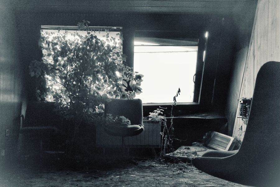 | Abandoned | I Luoghi Dell'abbandono Travel Photography Abandoned Architecture Plants Black And White Curtain Home Interior Window Sunlight Close-up Architecture Window Frame The Architect - 2018 EyeEm Awards The Traveler - 2018 EyeEm Awards The Still Life Photographer - 2018 EyeEm Awards The Creative - 2018 EyeEm Awards