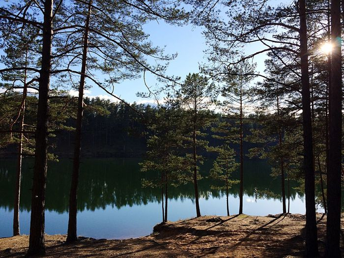 Nature Nature_collection Nature Photography Naturelovers Peace And Quiet Lake Nature's Diversities Lovely Weather Water Water_collection Forest Quality Time Beautiful Day Hello World Enjoying The Sun Relaxing