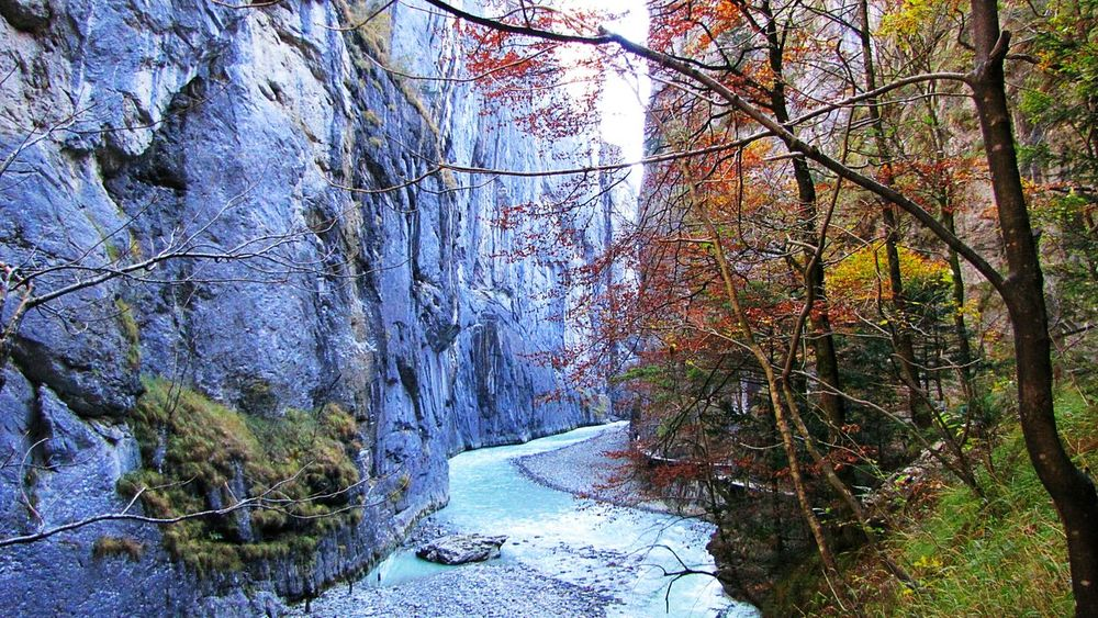 Speechless 😍❤ Tree Nature Beauty In Nature Outdoors Awesome! Peaceful Place Water Enjoylife Beauty Silence Of Nature Walk Swissalps Beautiful Nature Amazing View Switzerlandwonderland Nature Awesomenature Canyon Wall Wonderfulearth Enjoy Little Moments