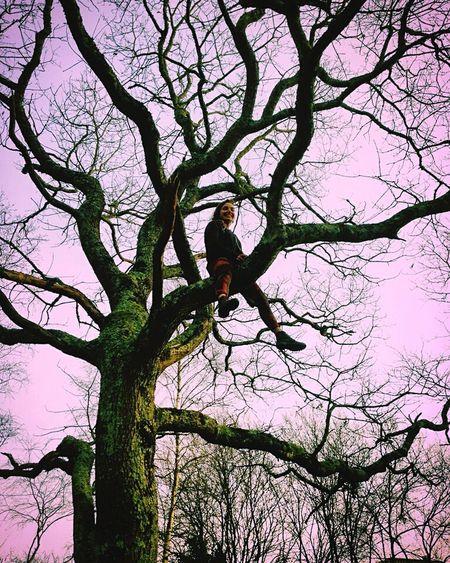 In da tree Freespirit Nature Photography Elf Sky Tree Wild Monkey Climbing Girl Wildchild Beautiful Colorful