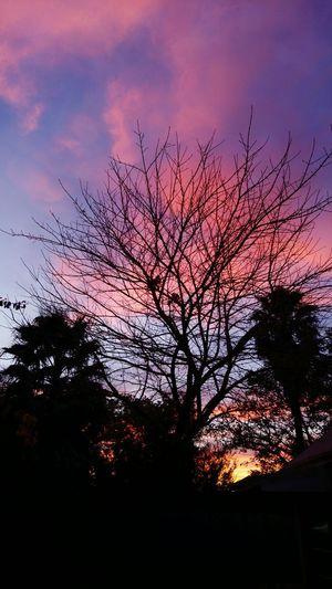 Beautiful morning 😍😍 Morning Nature Photography Beautiful View Beautiful Nature Beautiful Day Beautiful Morning Sunrise Sunrise