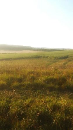 Enjoying The Sun Escaping Relaxing Landscape Long Walks Fields Cliffs