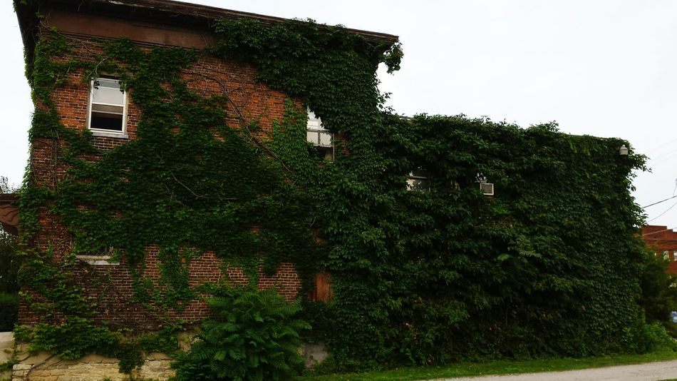 Ivy League. Downtown Dtfortwayne Old House Urban