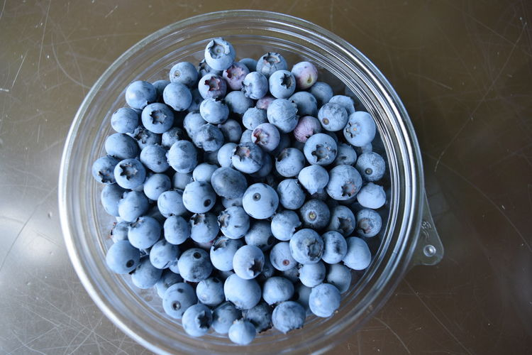Blue berry Food