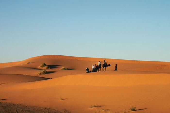 EyeEm Selects Sand Dune Clear Sky Desert Arid Climate Sand Adventure Heat - Temperature Riding Blue Sunny The Traveler - 2018 EyeEm Awards