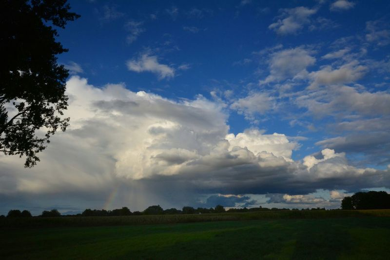 Rain Rainbow Colors Nature Photography EyeEm Nature Lover Nature Sky And Clouds Tree Sunset Field Sky Landscape Grass Cloud - Sky