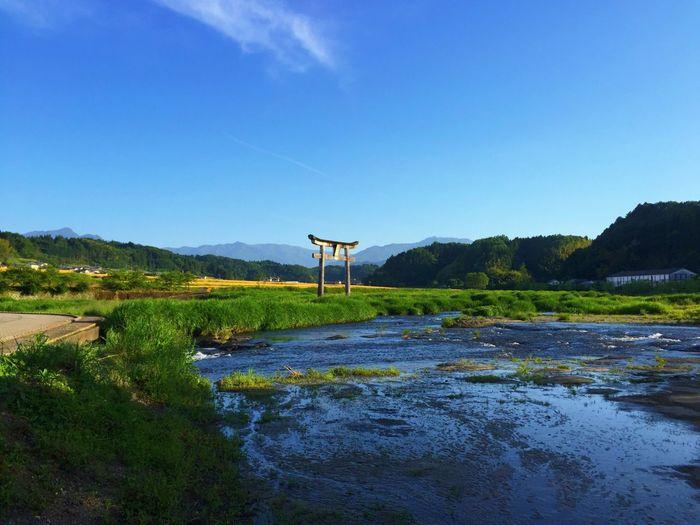 Origin of Japan