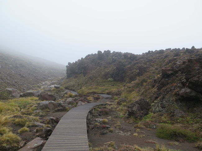Landscape Beauty In Nature Hill Landscape Lost Mordor Mountain Mountains Nature New Zeland  No People Non-urban Scene Photography Remote Rock Rock - Object Scenics The Way Forward Tongariro Tongariro Crossing Tranquil Scene Tranquility Travel Destinations Tree Volcano