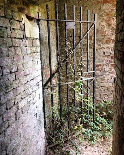 Abandoned tunnels Fuzed_fotos Malephotographerofthemonth Abandoned The Street Photographer - 2015 EyeEm Awards Urban Exploration Derelict Urbex Abandoned & Derelict EyeEm_abandonment Abandon_seekers