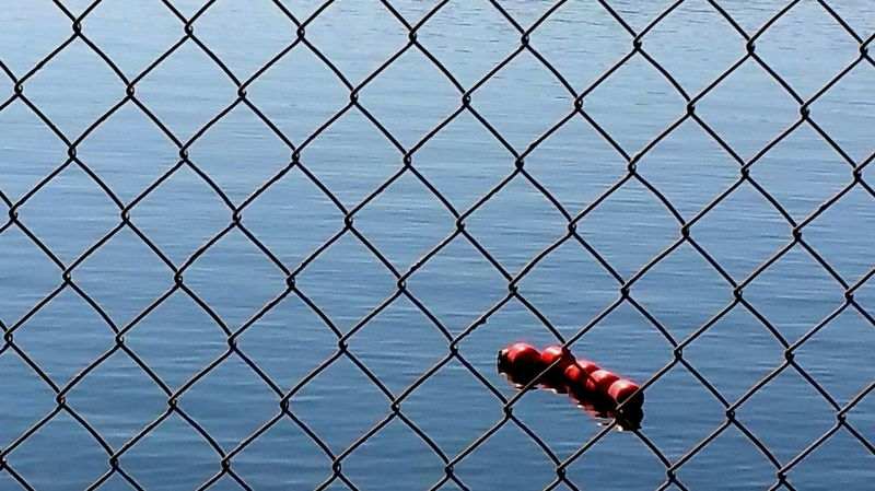 Things I Like The Stillness Of Nature Relaxing Quiet Moments Stillness Water Chainlink Fence Water_collection Water View Lake Lakeside Peaceful Serene Beautiful Nature Seeing The Beauty In Life Simplicity Simple Photography Nature_collection Nature Photography Natural Beauty Red Floats Blue Wave