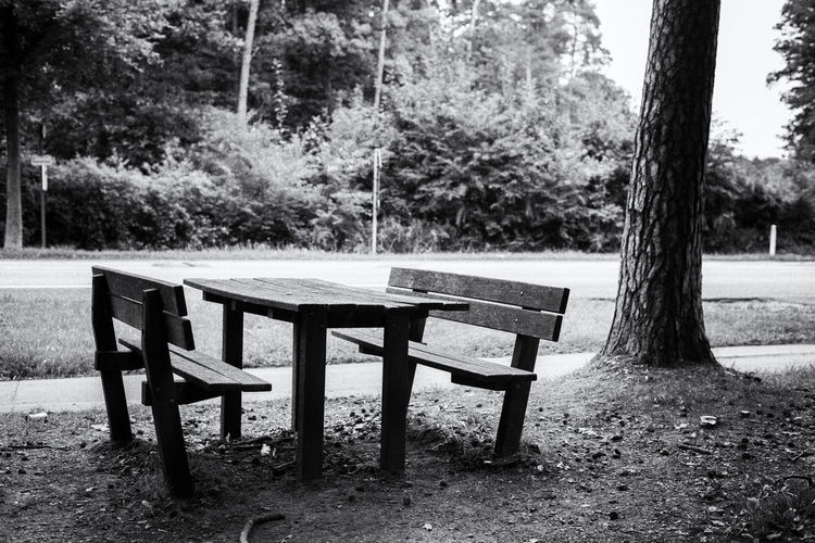 Picknickbench, black and white Black & White Picknick Summertime Trees Beauty In Nature Black And White Blackandwhite Day Forest Grass Growth Landscape Light And Shadow Nature No People Outdoors Picknick Table Picknick Time Picknickbench Picknik Summer Table Tranquility Tree Tree Trunk