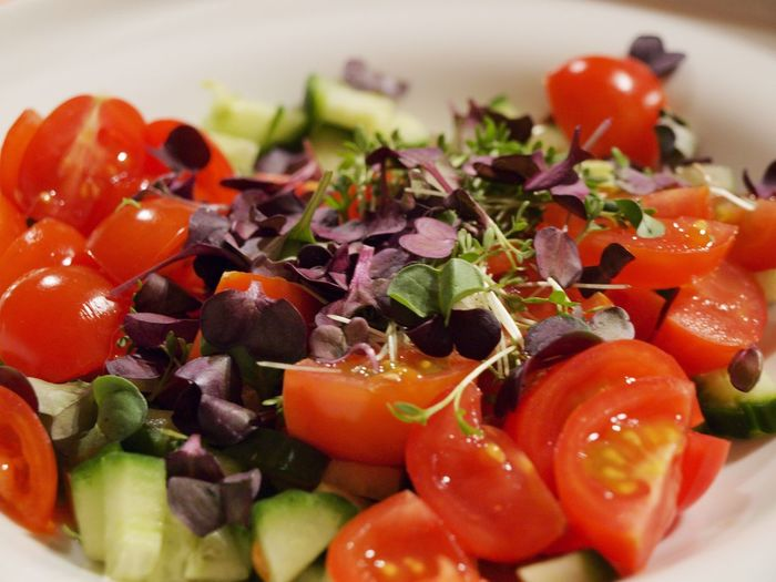 Food Stories Salad Food Tomato Vegetable Freshness Fresh Healthy Eating Food And Drink Red Close-up Purple Green Greens Vegetables Cherry Tomato Salad No People Indoors  Ready-to-eat Day Plate White Plate Cucumber Dill Herbs The Foodie - 2019 EyeEm Awards