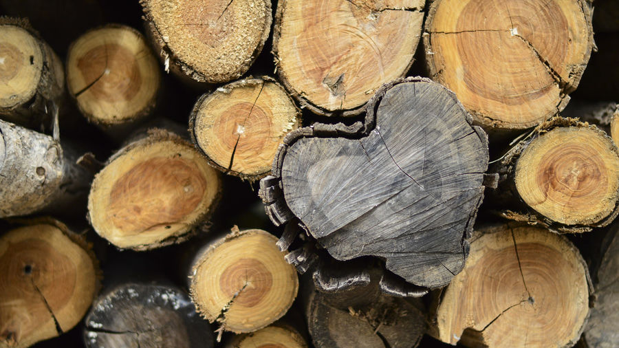 Heart Wood Wallpaper Wood - Material Blackheart Timber Firewood Stack Lumber Industry Backgrounds Woodpile Blackwood Log Wood Tree Full Frame Forest Fuel And Power Generation Nature Heap Deforestation Large Group Of Objects Close-up Abundance No People Outdoors