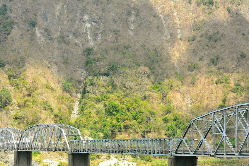 Bridge View Nature Photography Greenfeed Pivotal Ideas Home Is Where The Art Is Probinsya Provincelife