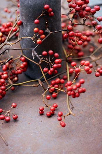 Red berries fallen on footpath