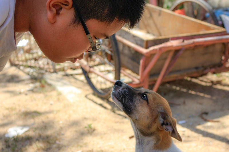 Love Pets Dog One Animal Domestic Animals Day One Person Child Love Friend Love Dog Love Pet Emotion Kiss Boy And Dog Talking Pictures Talk People Portrait Pet Portraits