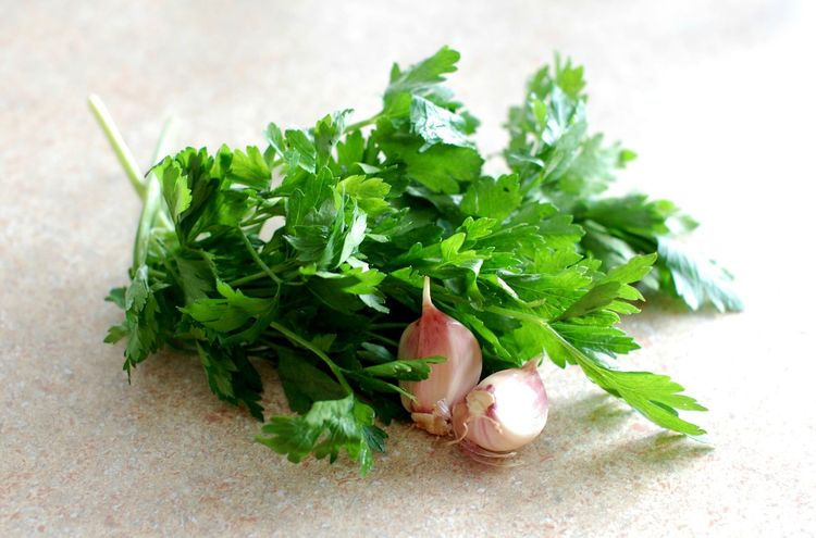 Parsley and garlic Close-up Cooking Eat Food Garlic Green Green Color Growth Healthy Eating Herb Ingridients Leaf Leaf Vegetable Organic Parsley Plant Raw Food Selective Focus Still Life