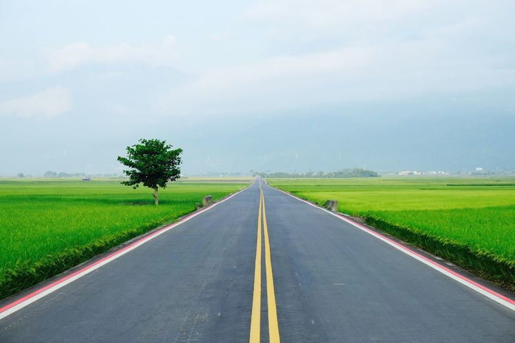 Empty road amidst grassy field against cloudy sky