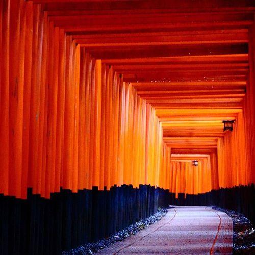 伏見稲荷大社の千本鳥居 EOS Eoskisx7i Kyoto My First Pic On EyeEm Japan Japanese Shrine