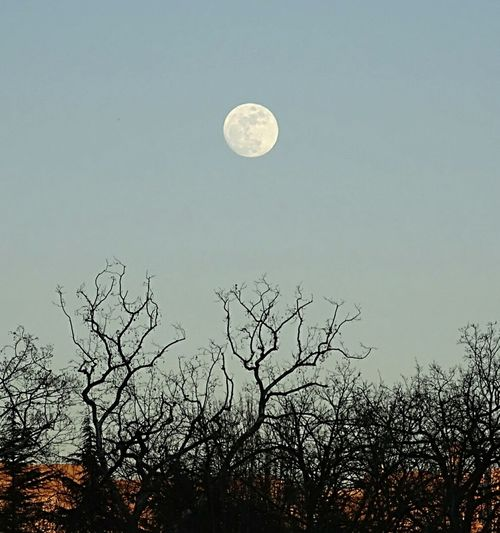 The Moon... La