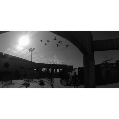 Built Structure Architecture Bridge - Man Made Structure Outdoors No People Day Sky City Helwan_university 360 Panorama Mobilephotography Blackandwhite Egyptpresent