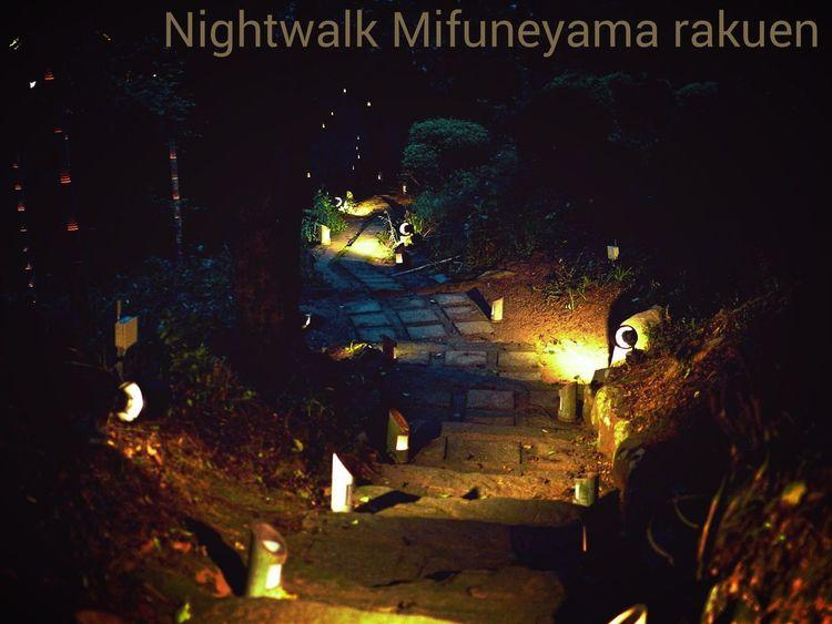 Night Walk On The Road Snapshots Of Life Nightphotography Illumination Japanese Garden Mifuneyama Rakuen. Takeo City Saga Prefecture Kyushu region Japan Photography / LUMIX L10K 50mm 1.4 Handheld
