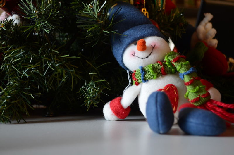 Snowman On Floor Against Plants At Home