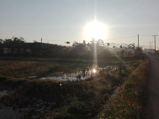 Agriculture Sunbeam Sun No People Outdoors Rural Scene Sky
