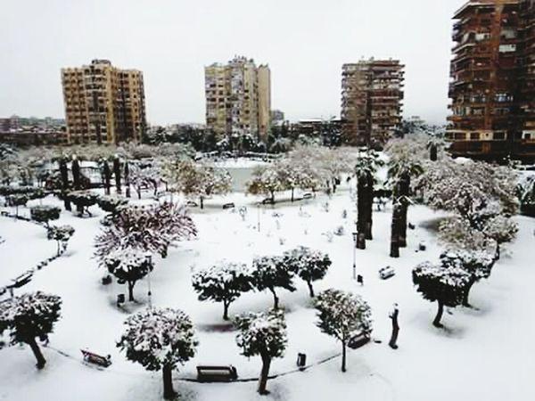 دمشق مدينة الياسمين