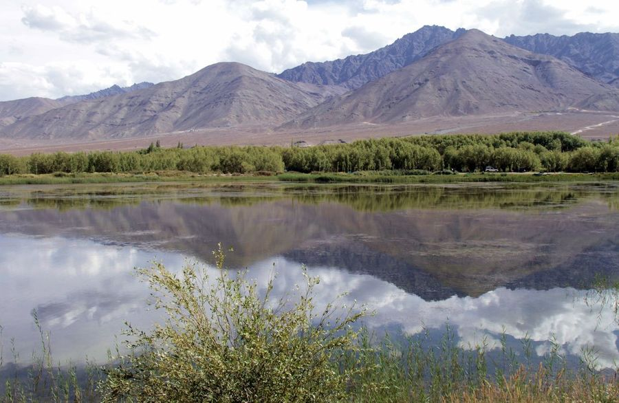 Ladakh India - Himalayan landscape Eyeemlake Himalayan Mountains Beauty In Nature Cloud - Sky Day Environment Eyeemnaturelover Eyeemwater Green Color Indiatravel Ladakh Landscape Ladakhdiaries Lake Landscape Mountain Mountain Peak Mountain Range Nature No People Non-urban Scene Outdoors Plant Purity Reflection Reflection Lake Reflections In The Water Scenics - Nature Sky Tibetan  Tranquil Scene Tranquility Water