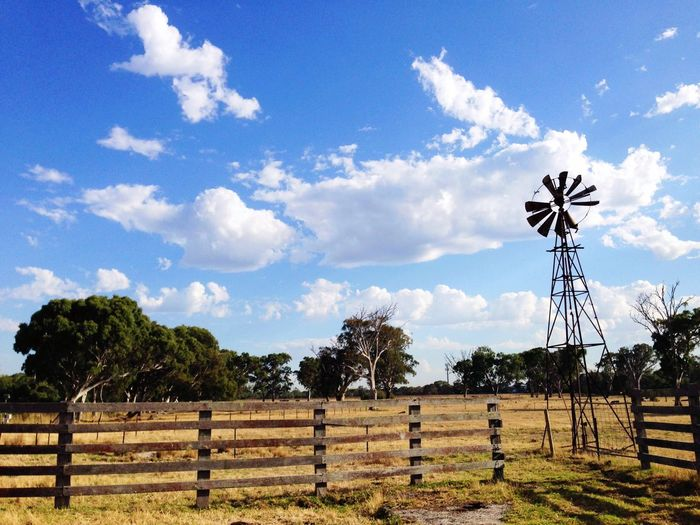 Farm Farm Life Farmland Home Urban Landscape Windmill Paddock Australia Melbourne Summer Walking Around