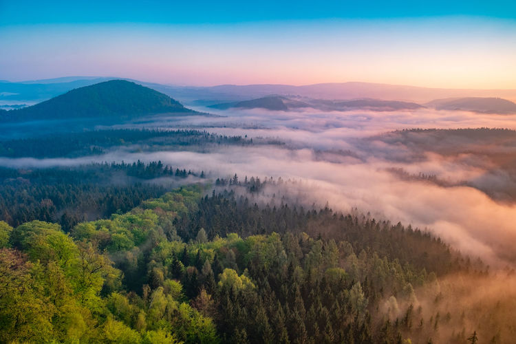 Lazy misty morning. foggy forest during autumn sunrise, saxon switzerland, germany.