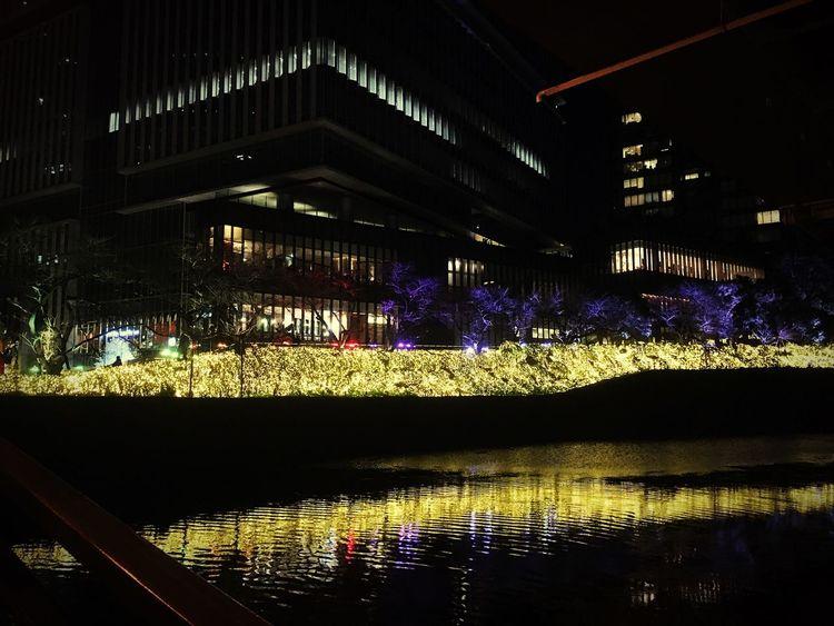 Tokyo Tokyo Night Illumination Christmas Lights Christmastime Christmas Eve Tokyo Garden Terrace Kioicho Akasakamitsuke Nagatacho