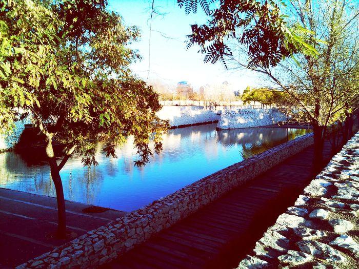Parksinthecity València