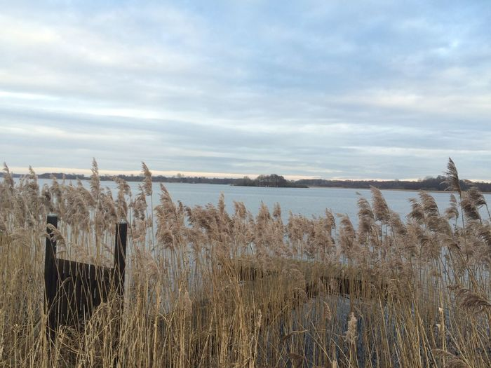 Zarrentin  Lake View Schaalsee