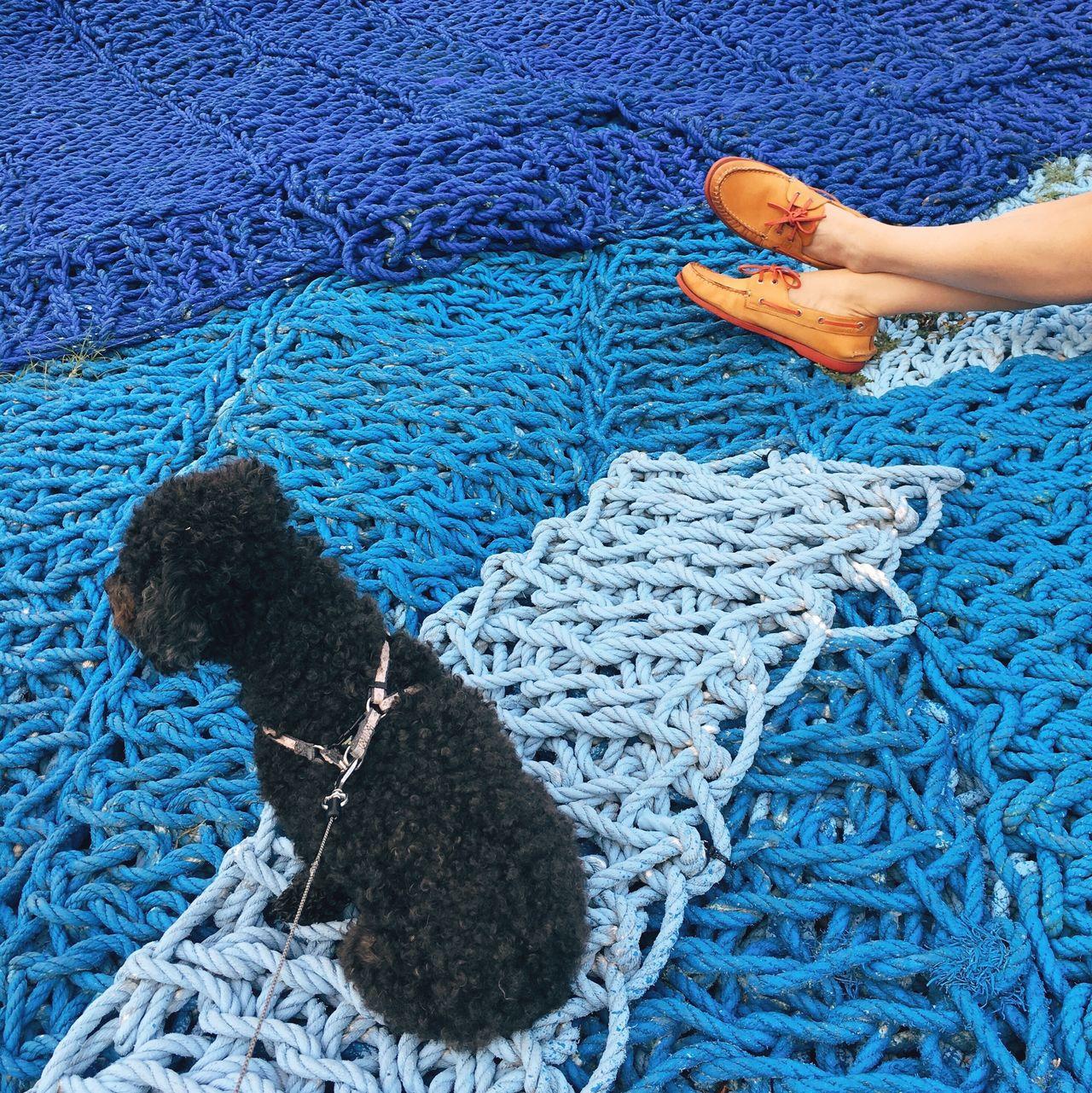 High angle view of woman and dog on fishing net